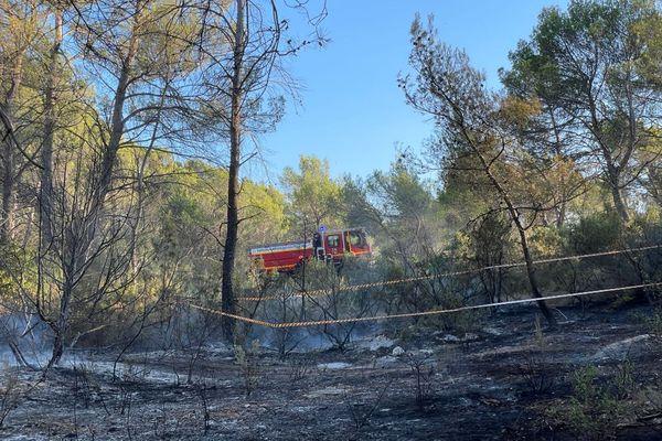 Cinq hectares sont partis en fumée du côté de Meyreuil dans les Bouches-du-Rhône, près d'Aix-en-Provence.