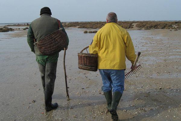 La pêche à pied interdite en Loire-Atlantique et sur certaines plages de Vendée
