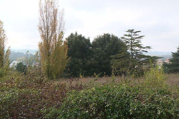 Le terrain arboré situé sur la commune de St-Jean (31).
