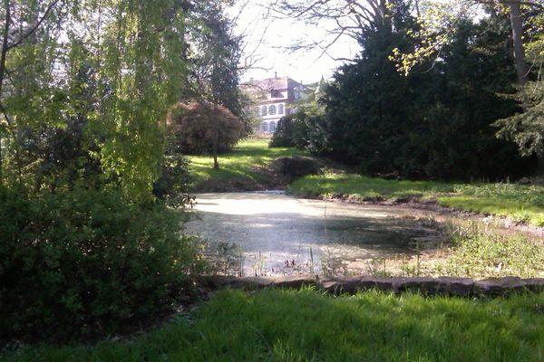 """Le Foyer de Charité est situé dans un parc de 10 hectares, qui comptent de nombreux arbres classés """"remarquables"""""""