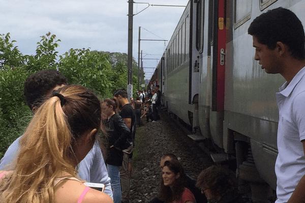 Les passagers sont sortis des rames dans l'attente que la panne soit réparée.