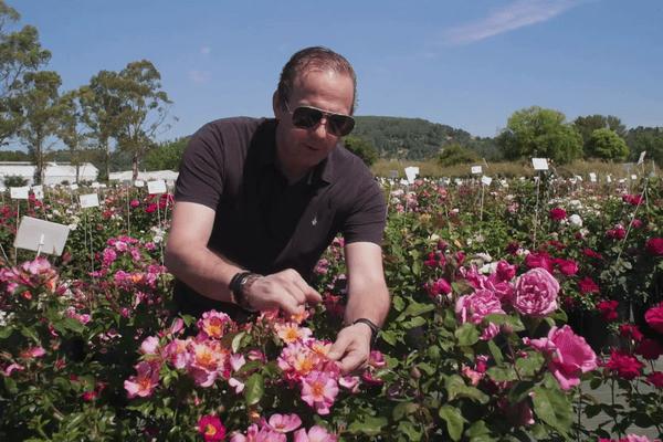 Chez les Meilland, la passion des roses se transmet de génération en génération.