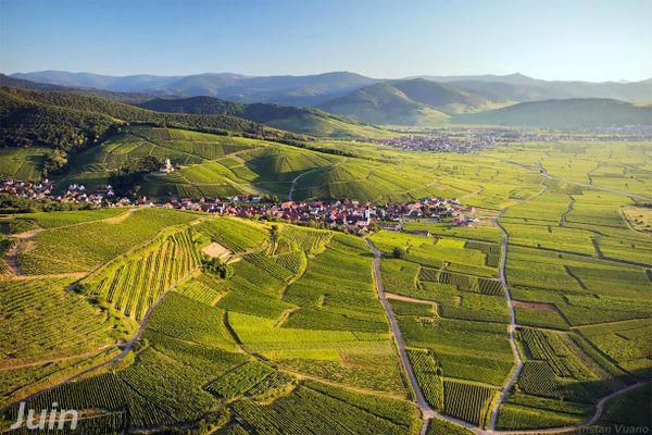 Katzenthal, Perle de la Route des Vins d'Alsace.