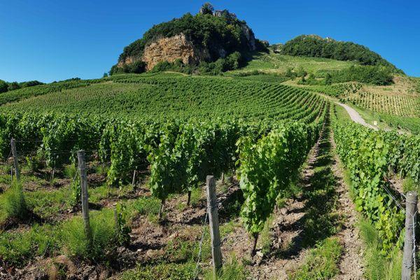 Dans le Jura, la commune de Château-Chalon donne son nom à  l'appellation la plus prestigieuse du vin jaune