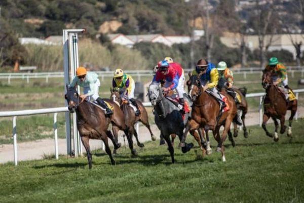 A Ajaccio, l'hippodrome de Vignetta a lancé sa saison le 28 mars dernier. Comme c'est le cas partout en France, les courses se déroulent actuellement à huis clos.