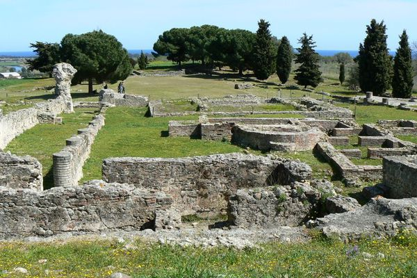 Journées du patrimoine en direct d'Aleria, le site antique.