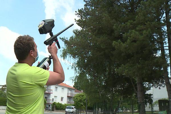 A Pau, les agents municipaux chassent les chenilles à l'aide de paintball.