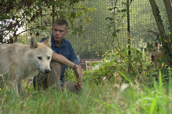 Yoann a gagné la confiance des loups.