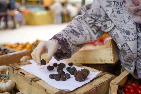 Des truffes en vente sur le marché traditionnel de Sarlat, en Dordogne - Photo d'illustration