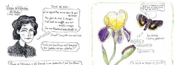 Des extraits de textes littéraires et des citations d'illustres poètes sont égrenées dans les pages du carnet.