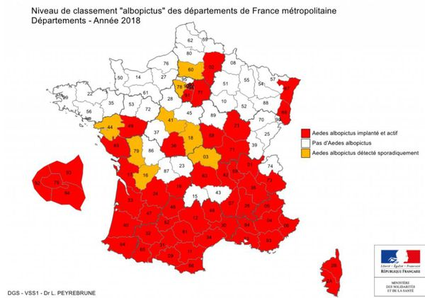 Moustique-tigre en France en 2018