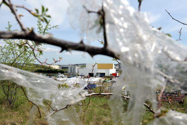 Les sacs plastique, véritable catastrophe écologique