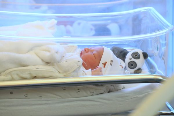 13% de naissance en moins ont été enregistrée en Provence-Alpes-Côte d'Azur entre janvier 2020 et 2021
