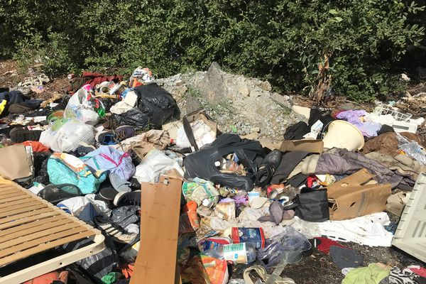 Mis en place depuis le début de l'année, le nouveau système de collecte des déchets ne remplit pas les objectifs.