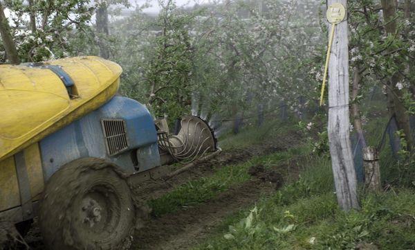 Les arbres fruitiers sont de gros consommateurs de produits phytosanitaires.
