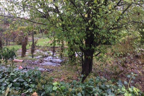 Le jardin dans lequel le corps a été retrouvé