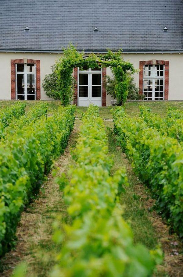 La maison de champagne Delamotte