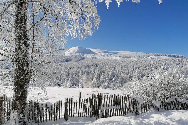 La neige sublime les paysages d'Auvergne depuis déjà une quinzaine de jours, comme ici, à Pessade (Puy-de-Dôme).