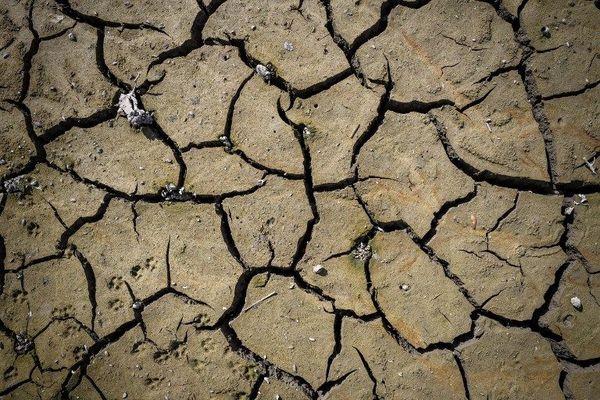 Vallée de la mort, désert africain ? Non, le lit du Doubs assoiffé par la sécheresse.