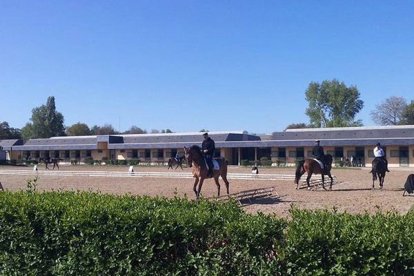 Pôle France de l'Ecole Nationale d'Equitation de Saumur