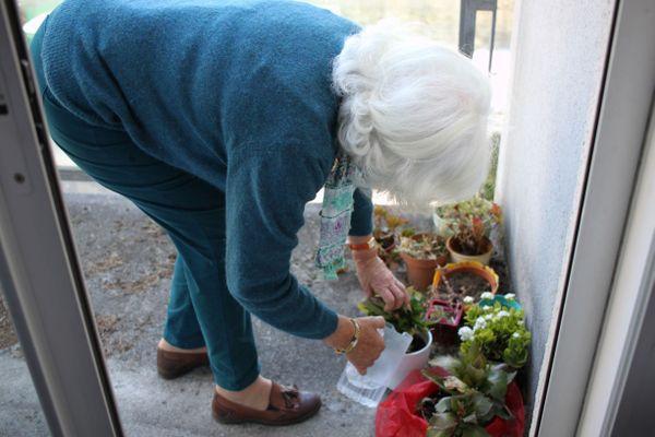 Adeline vient une fois par semaine et commence sa visite par l'arrosage des plantes sur le balcon de Josette