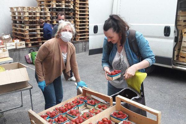 premières fraises de la saisons