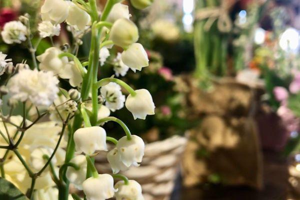 Ce mercredi 1er mai, les brins de muguet seront vendus en nombre chez les fleuristes ou au bord des routes.