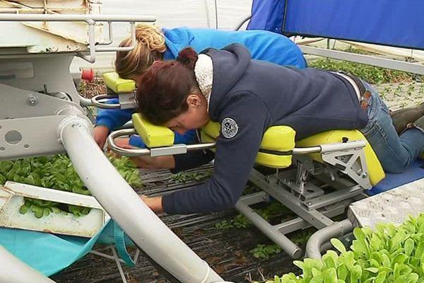 En position couché, Laurence peut planter.
