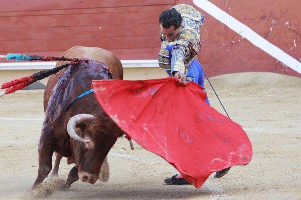 Une corrida à Bayonne (image d'illustration)