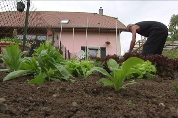 Jardiner à l'ombre des Eurockéennes ne pose pas de problème