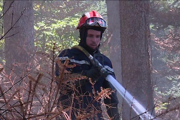 Une quarantaine de sapeurs pompiers sont mobilisés en forêt pour éteindre ce feu qui couve sous le tapis végétal