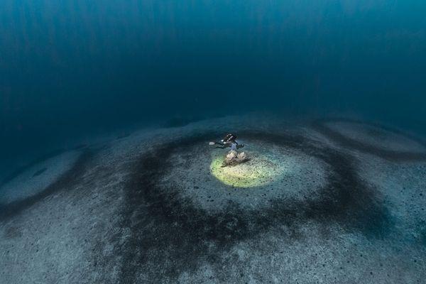 Le mystère des anneaux de corail