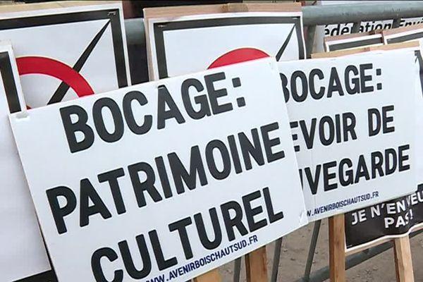 Indre : manifestation interrégionale pour la préservation des bocages