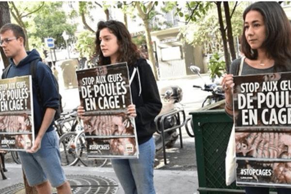 Des panneaux, et une pétition.