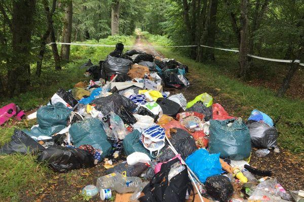L'un des cinq amas d'ordures trouvés dans la forêt de Fontainebleau.