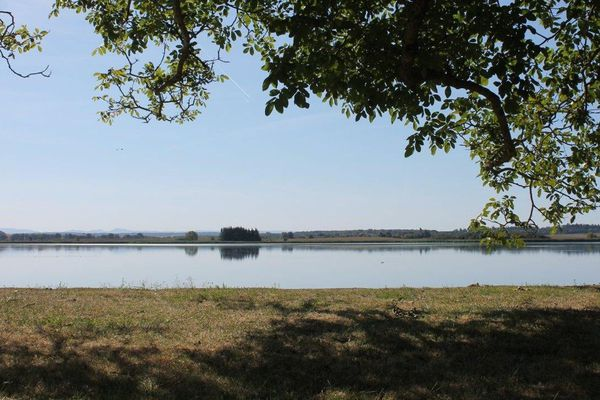 Le domaine de l'Indre et son étang abritent une faune et une flore très riches.