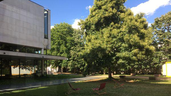 L'ouverture des jardins du Musée, possible depuis le vendredi 14 juin n'est que le premisse des projets que Susanna Gállego Cuesta réserve au musée pour réinventer son espace.