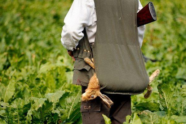 La chasse, troisième loisir préféré des français avec 1,2 millions de pratiquants.