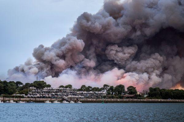 Les flammes ont ravagé 100 hectares de la forêt de Chiberta, au coeur d'Anglet.