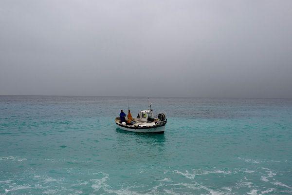 Les pêcheurs des Alpes-Maritimes ont de plus en plus de mal a écouler leurs prises.