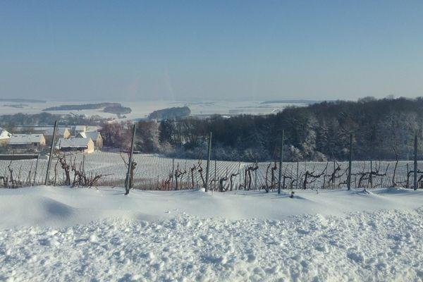 La montagne de Reims sous un manteau blanc