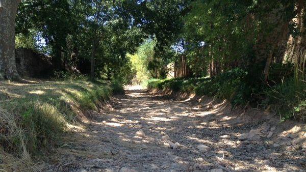 La Nazoure, le cour d'eau traversant la commune de Cruzy (34), est à sec.