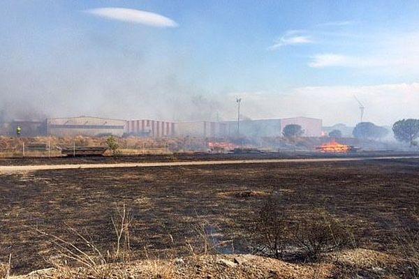 Rivesaltes (Pyrénées-Orientales) - 12 hectares ravagés par les flammes derrière une zone d'activité - 27, juillet 2016.