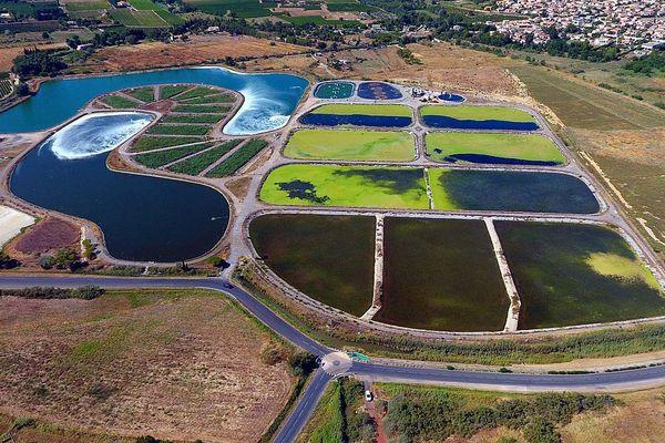 Pour Mèze et Loupian, les eaux usées sont prélevées avant l'arrivée à l'écosite de la station de lagunage.