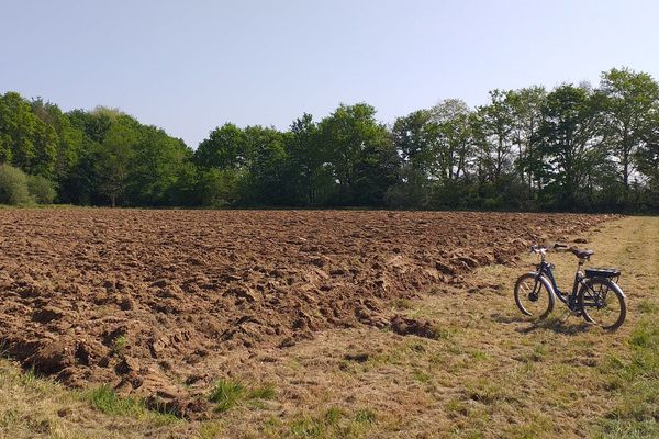 Près du stade, ce terrain de 5000 M2, dont la terre est fraîchement retournée, va accueillir un jardin potager solidaire