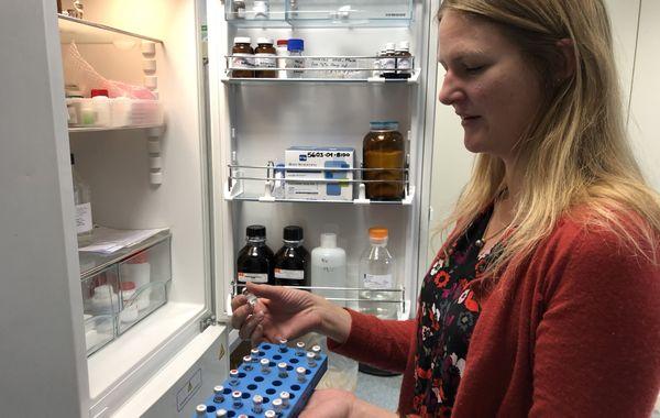Audrey Bergouignan expose quelques uns de ses échantillons. Ne pas se tromper de frigidaire. Celui-là, c'est celui des échantillons.