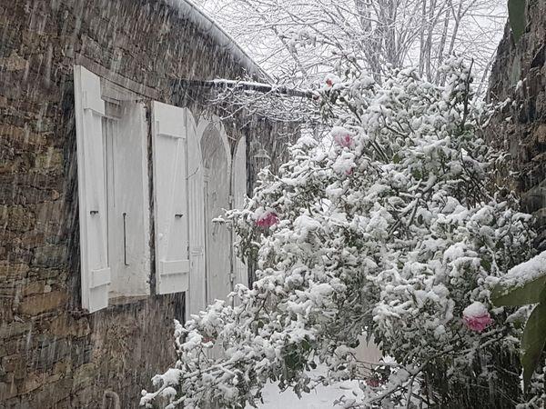 Dans certaines parties de l'île, la neige continue de tomber