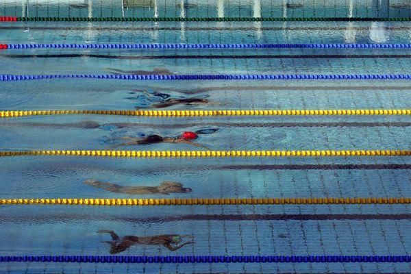 Une piscine olympique va prochainement sortir de terre à Porto-Vecchio. Une première en Corse.