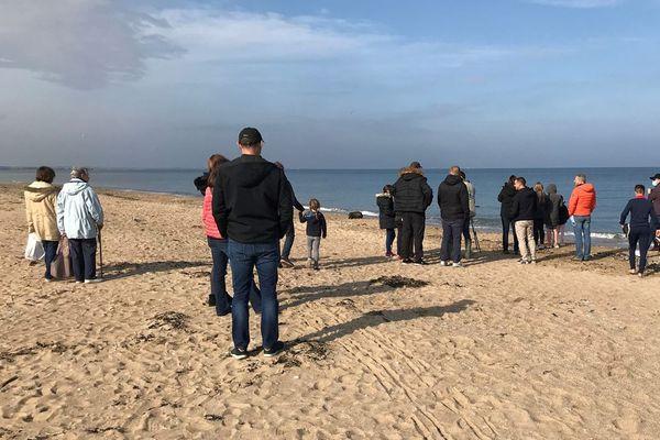Un jeune phoque a élu domicile sur la plage de Merville-France depuis l'été dernier. Il est devenu, malgré lui, une véritable attraction.