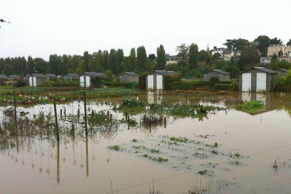La pluie abondante a noyé les jardins familiaux de Château-Gontier